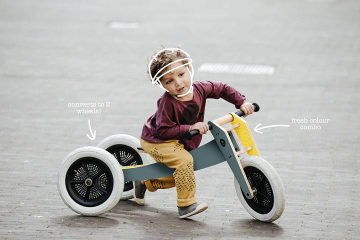 Wishbone Bike 2 in 1 - grey