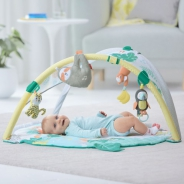 Tropical Paradise Activity Gym & Soother